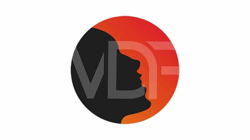 Logo VDFactory - Portfolio Espace-digital - Nicolas Masoni